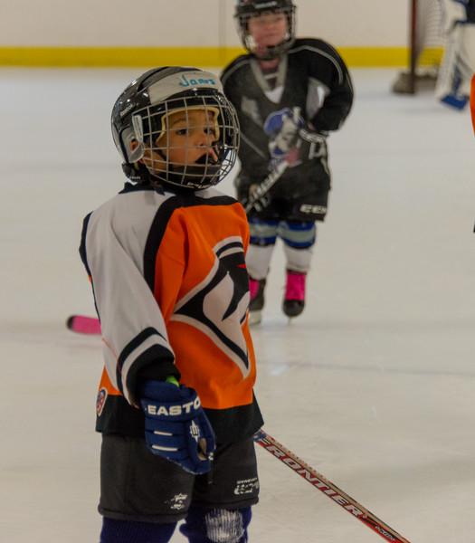 James Ice Hockey 2014