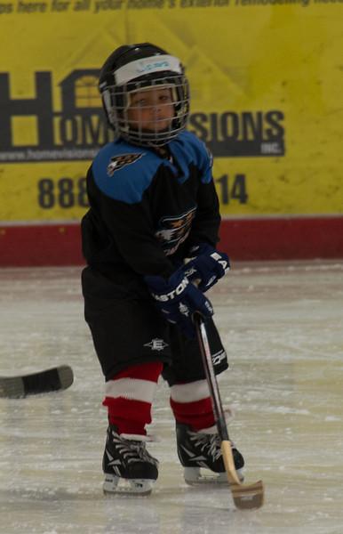 James Ice Hockey Fall 2013