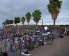 Bikes, bikes, and more bikes! Yikes!