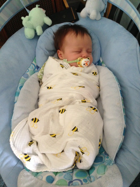 """Covered in bees again!  With """"her"""" phone over head, playing white noise to help her sleep."""