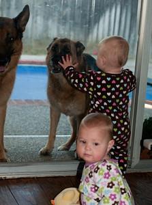 Doggies we love doggies.
