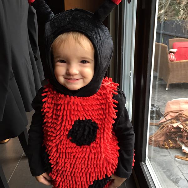 Cute as a Bug!