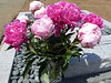 Masako chose two shades of pink peonies for Emery.