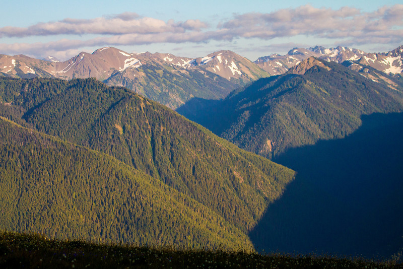 Olympic Mountain range from Hurricane Ridge.