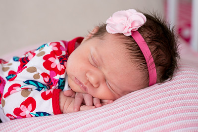 Eleanor Pearl, Newborn | 2013