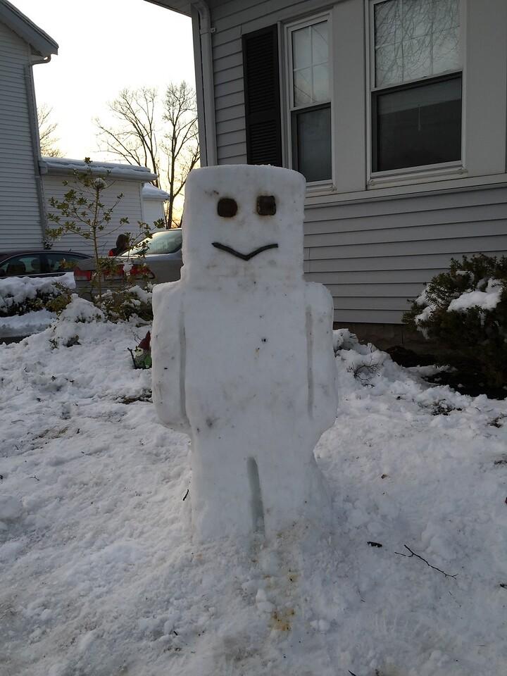 Minecraft Snow-Steve