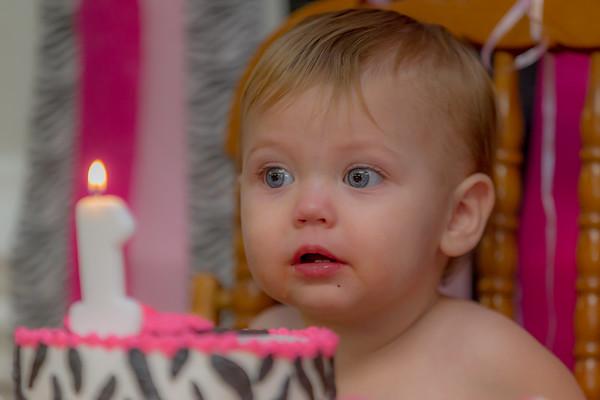 Emmalin's 1st Birthday