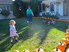 The Pumpkin Playpen is open!(2013 KPP Pumpkin Acquisition)
