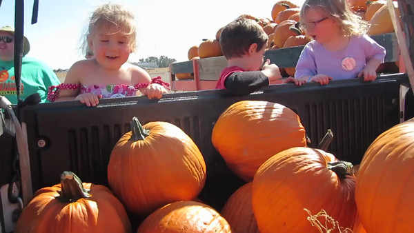 We loaded them all! (2013 KPP Pumpkin Acquisition)