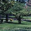 Graceland - April 8, 1977.