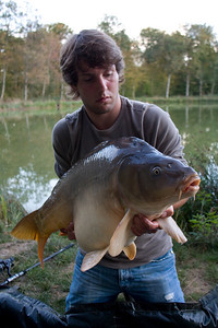 17,75 kg mirror carp