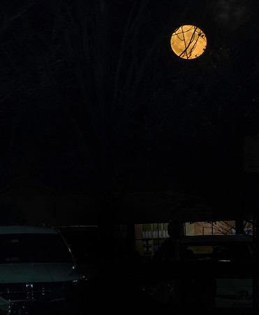 As we walked out, this. A full moon, deep organge, was rising over the parking lot.