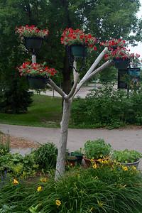 Petunia tree Steel skeleton & cement