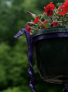 Petunia tree - Potholder detail