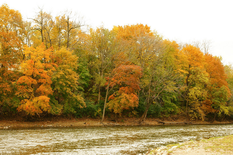 Autumn - in the autumn months, the leaves change colors and are very pretty