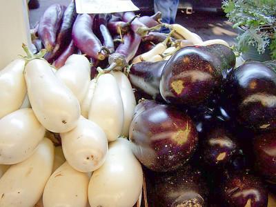 Eggplant - 3 different kinds of eggplant