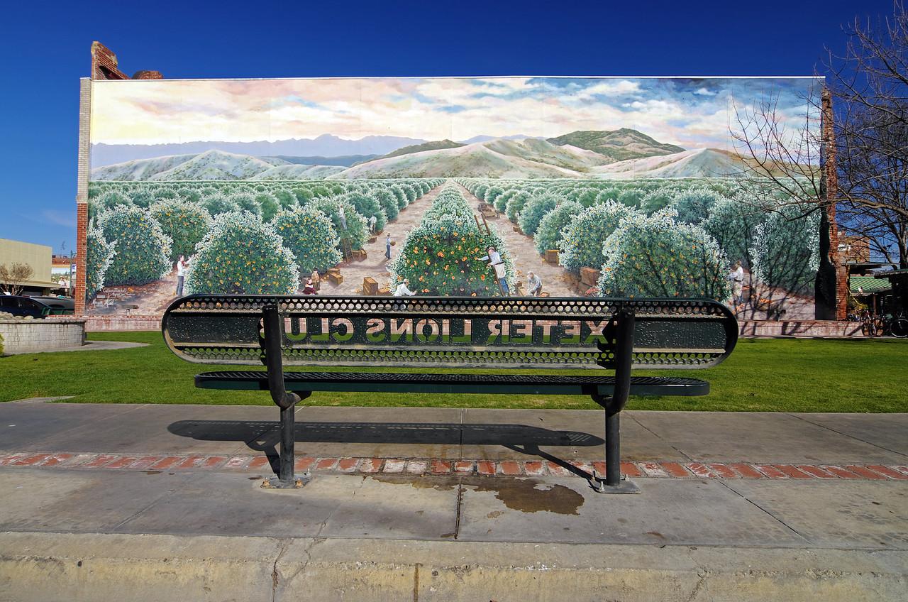 """The """"Orange Harvest"""" Mural on the SE Corner of east Pine St & E Street."""