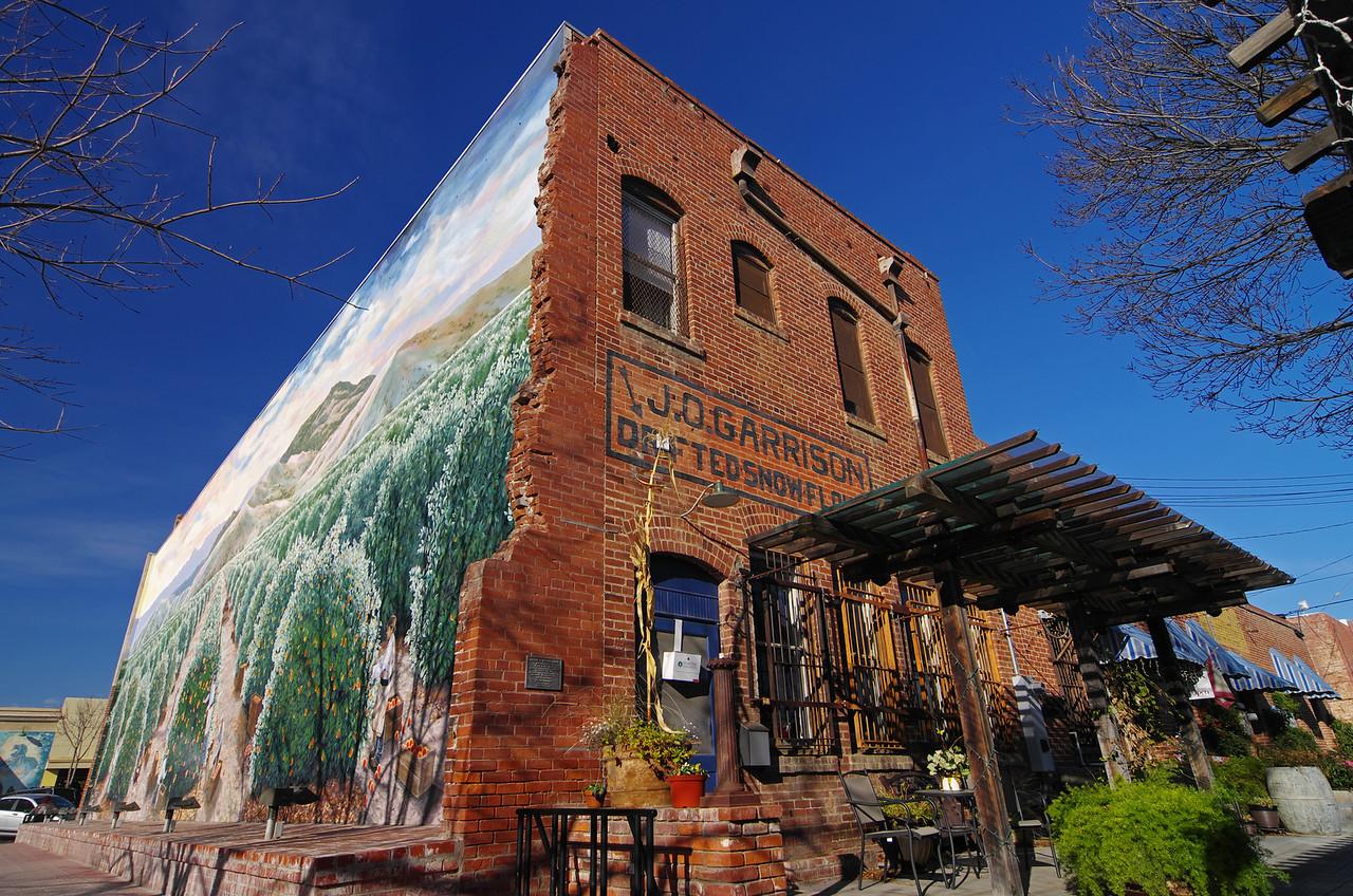 "The ""Orange Harvest"" Mural as seen from Kepton Ct & Seldon."
