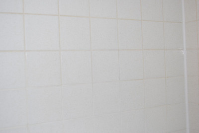 Tile on shower wall