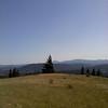 El peine del viento (the wind comb) of Corvallis Oregon
