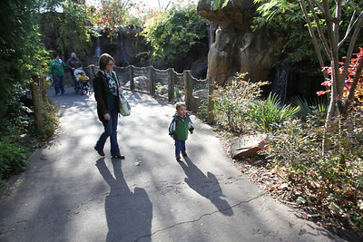 Day trip to the St. Louis zoo with the family on November 6, 2010.  (Jay Grabiec)