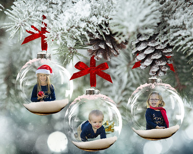 8x10 Frosted Glass Ornaments