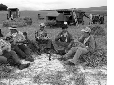 Time for a break (in the center, my uncle Louis, Didier having a glass of wine & Cedric laughing). I love that photo!