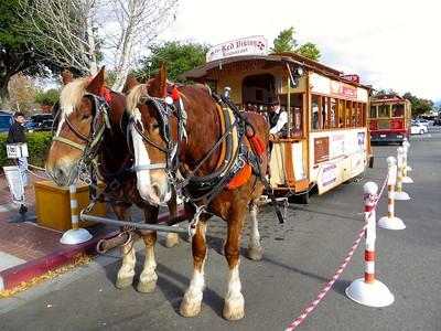 Les chevaux à Solvang