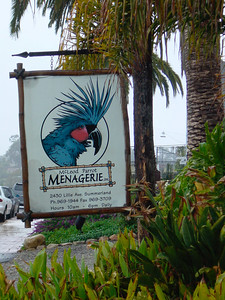 Menagerie: www.sbceo.k12.ca.us/~summerld/today/mng.html