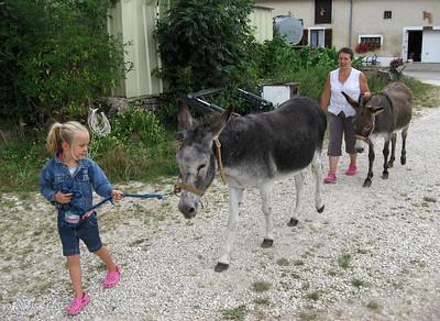 Sylvie & her donkeys