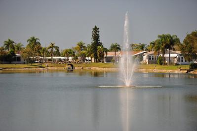 Florida February 14, 2011 042
