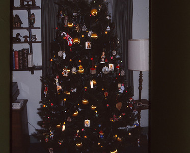 Our tree with German ornaments