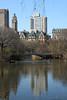 NYC new camera, Friday and Saturday 268