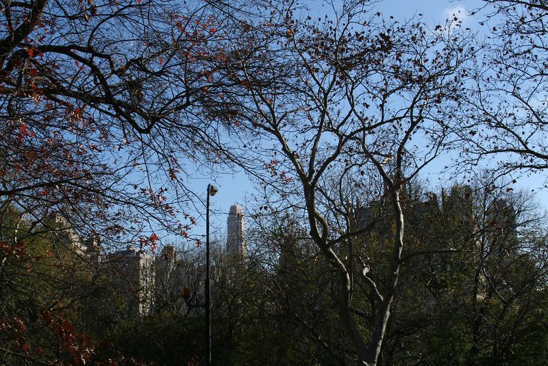 NYC new camera, Friday and Saturday 215