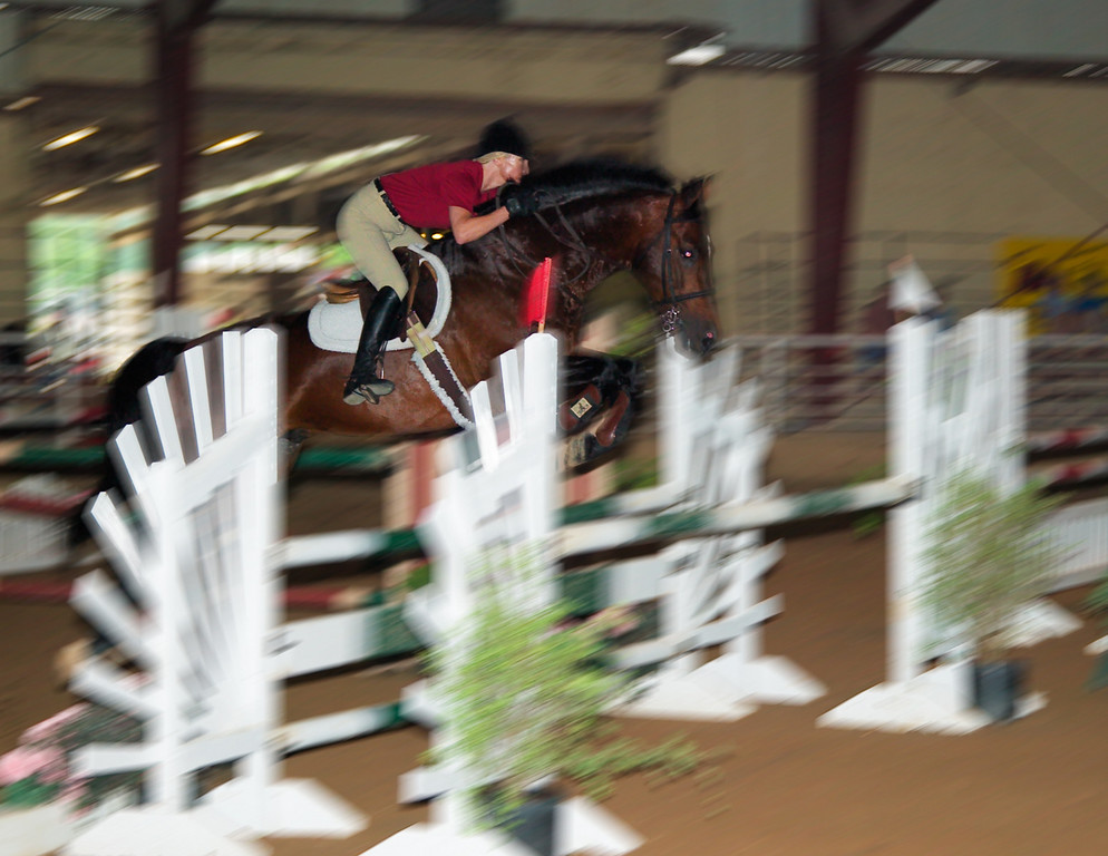 Horse Show-2003