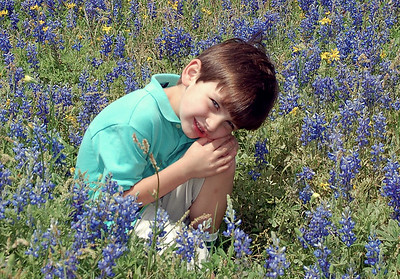Patrick in the bluebonnets