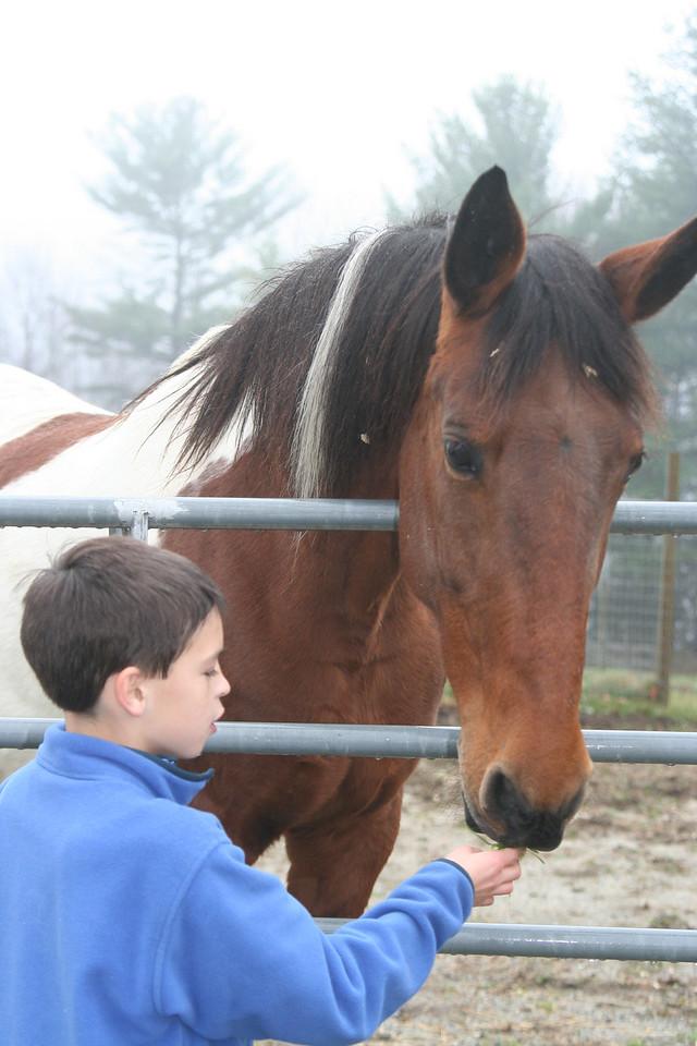 IMG_2666 Ian feeding Abby Horse flash