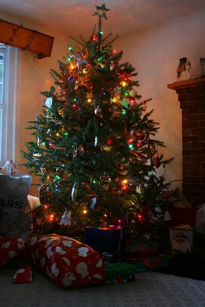IMG_0342 Christmas tree 2008