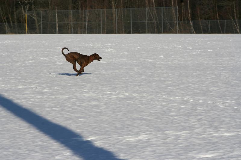 IMG_0436 Aaron running at Yudicky Field