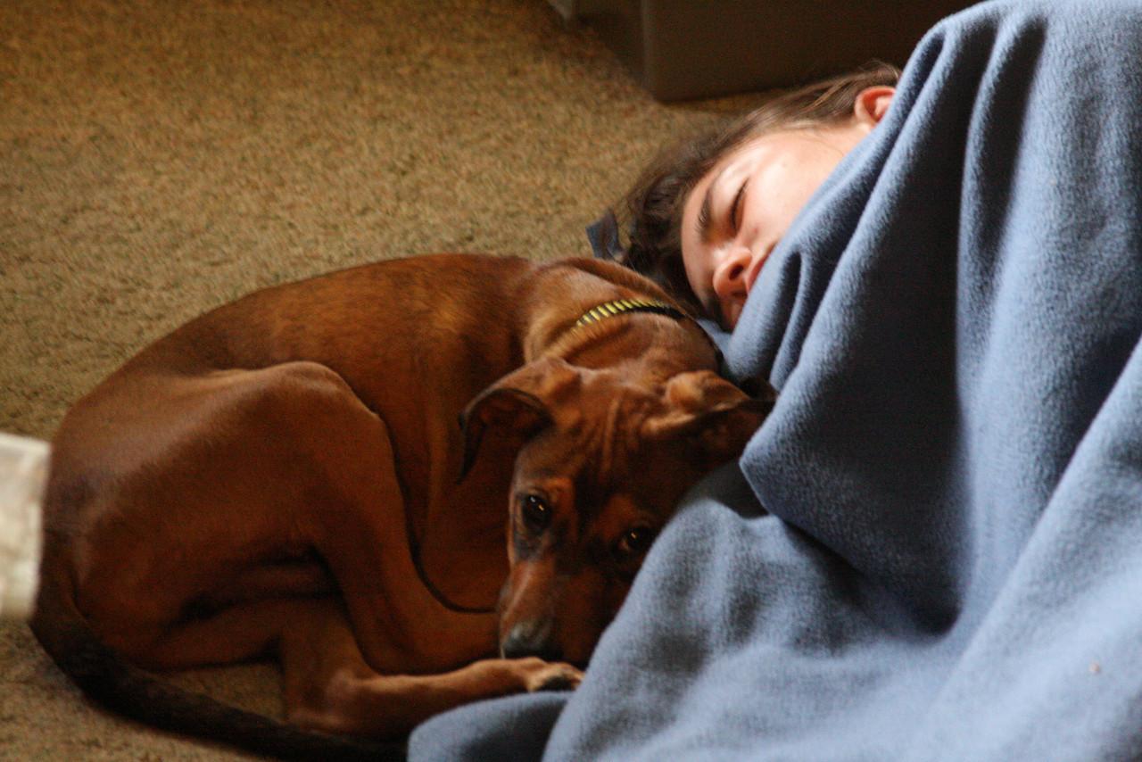 IMG4_12004 Kristin and Fitch dog sleeping