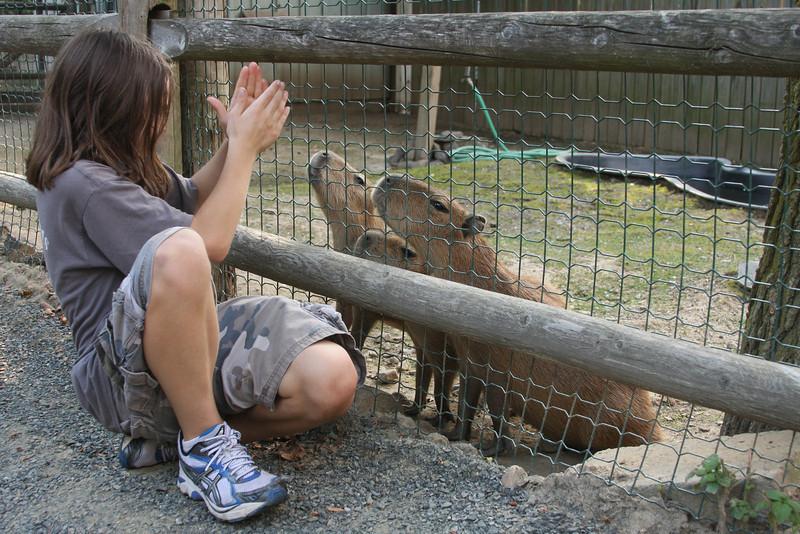 IMG4_31210 Brian and Capybaras