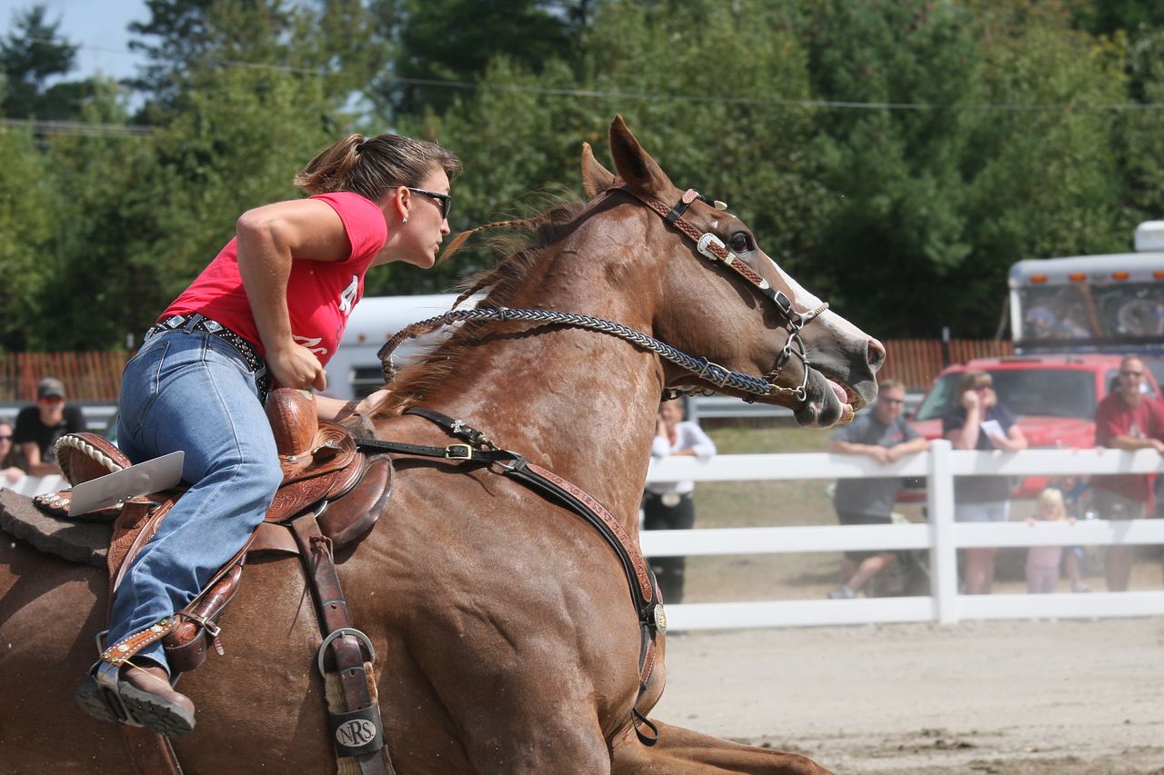IMG4_31605 Hopkinton Fair Horse Event