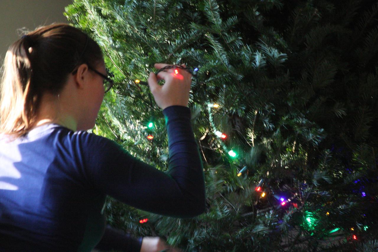 IMG4_35605 Kristin and Christmas lights