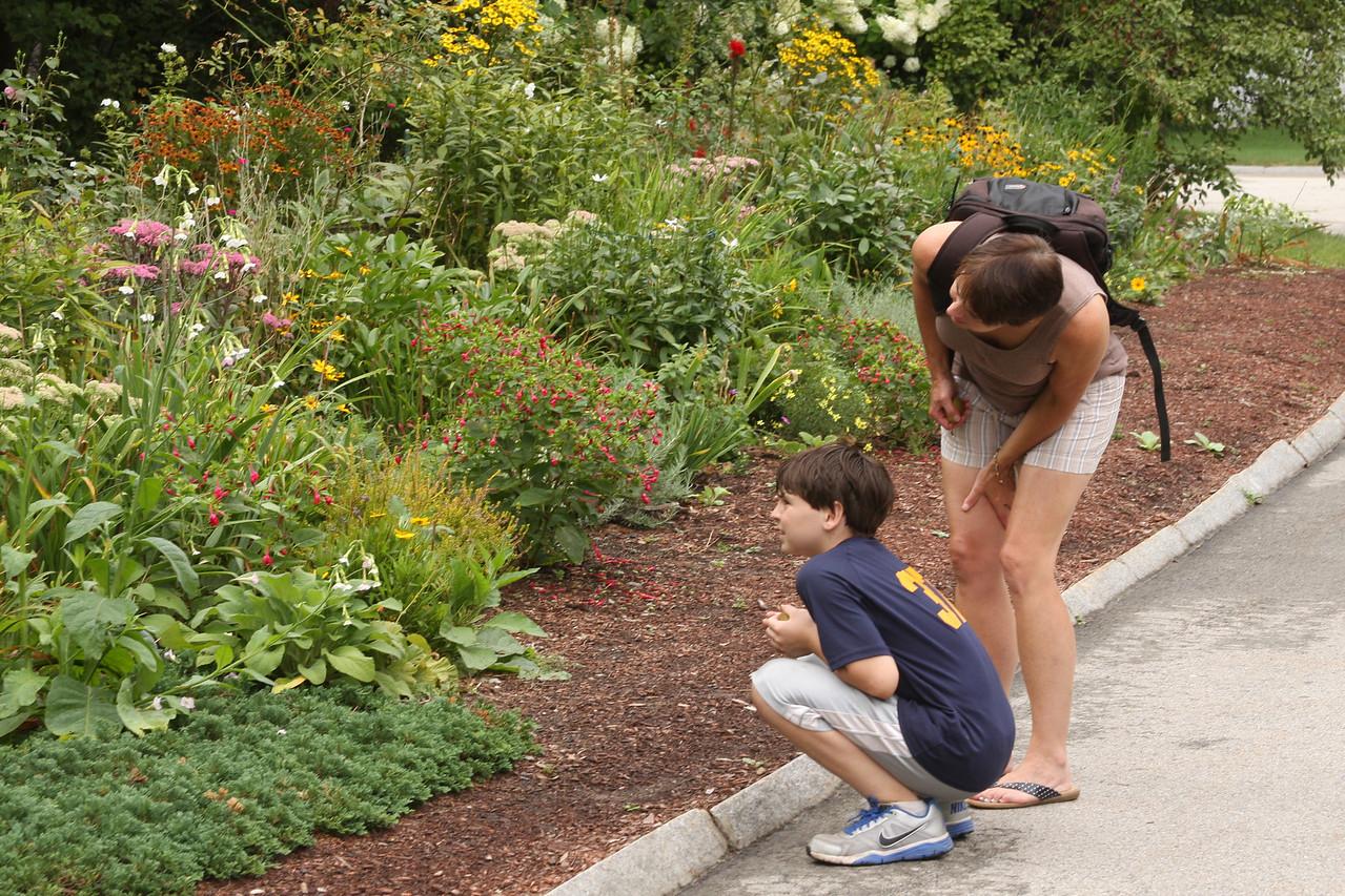 IMG4_39581 Brian, Maggie garden