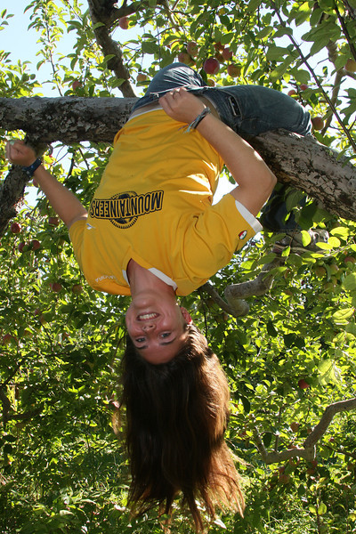 IMG4_40692 Kristin classic hang in apple tree
