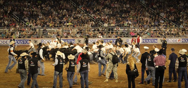 2015-03-04-017 Houston Rodeo