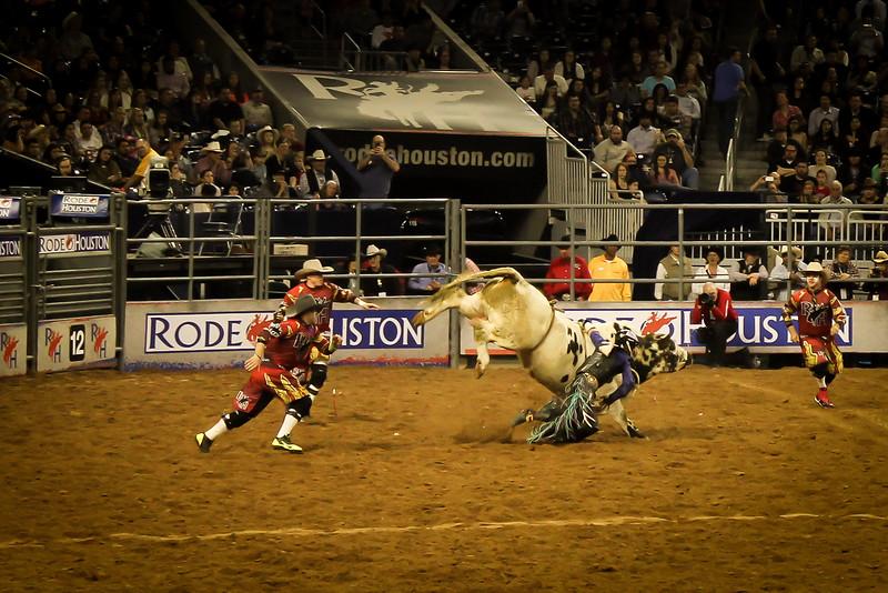 2015-03-04-008 Houston Rodeo