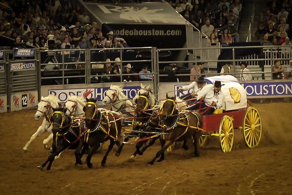 2015-03-04-016 Houston Rodeo