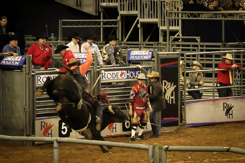 2015-03-04-012 Houston Rodeo