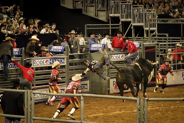 2015-03-04-011 Houston Rodeo
